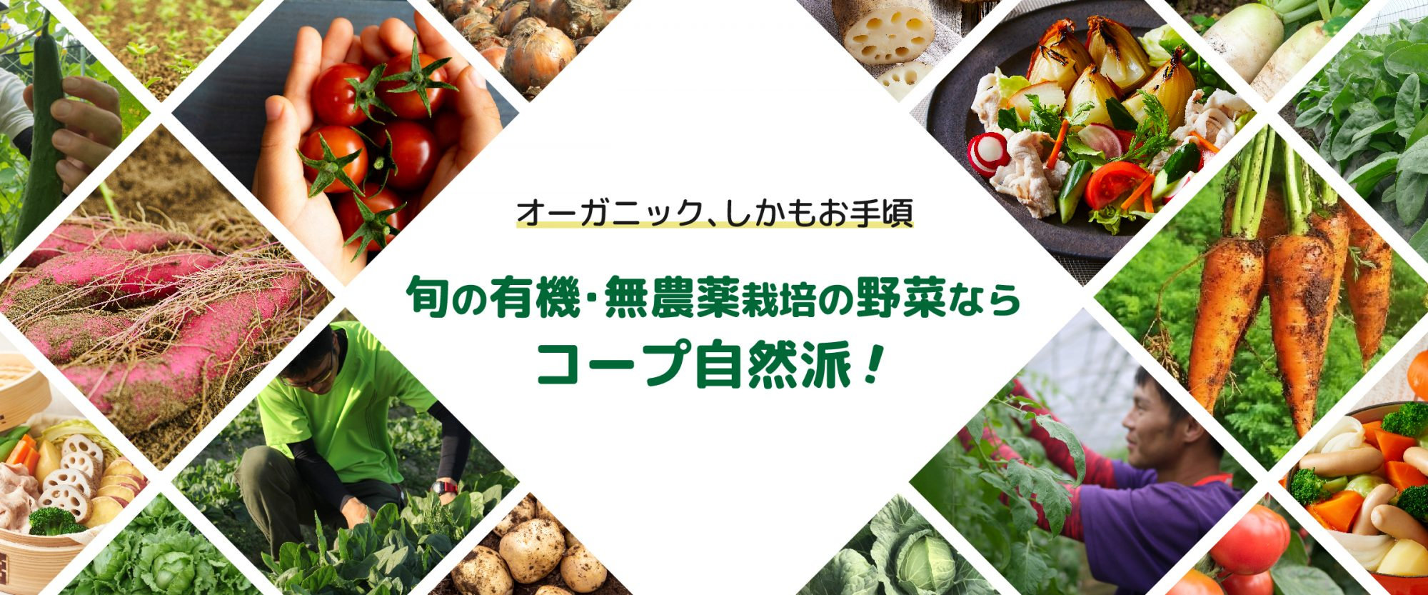 有機・無農薬野菜